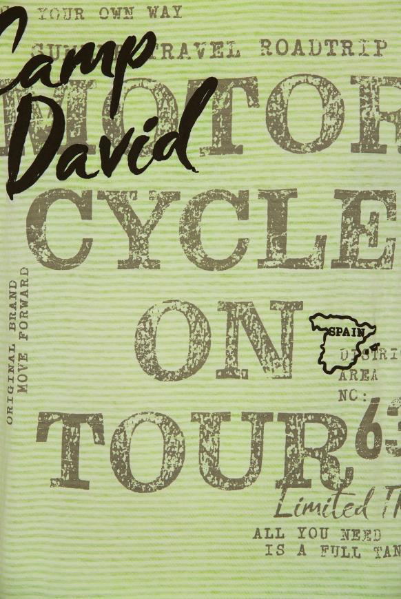 Streifenshirt mit Vintage- und Puff-Print